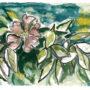 Wildrose